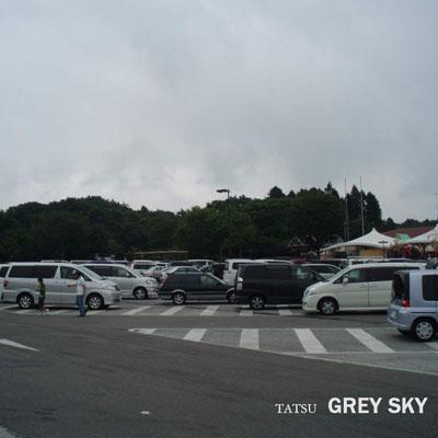 Tatsu - Grey Sky