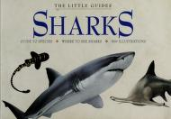 Cover of: Sharks (Little Guides (San Francisco, Calif.).) | Leighton R. Taylor